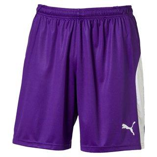 PUMA LIGA Shorts - Puma Team