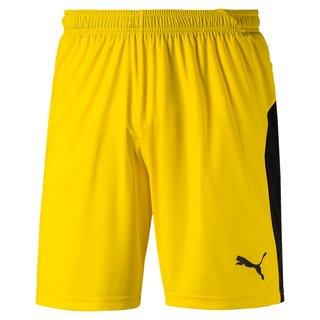PUMA LIGA Shorts Junior - Puma Team