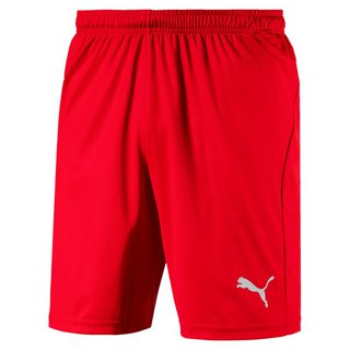 PUMA LIGA Shorts Core with Brief - Puma Team