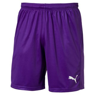 PUMA LIGA Shorts Core with Brief Junior - Puma Team